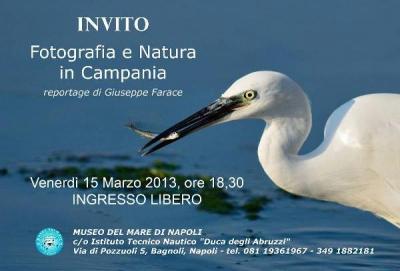 """""""Fotografia e Natura"""" al Museo del Mare di Napoli"""""""