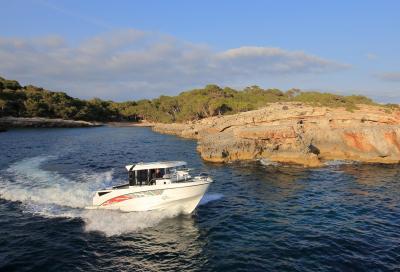 Barracuda 8, non solo per la pesca
