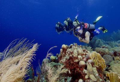 Sub e mare affollato