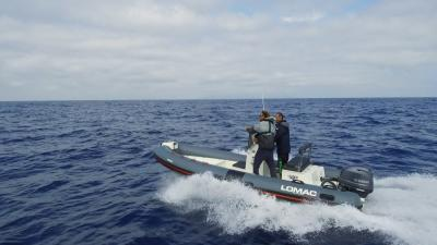 Lomac 540 IN Spearfishing in package con Yamaha F40G Supreme, ecco il video