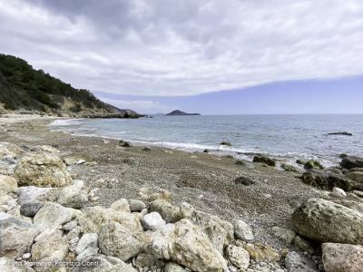 """""""Adotta una spiaggia"""", la nuova campagna di Marevivo"""