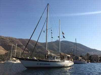 Gruppo Boero e Progetto Mediterranea insieme per un futuro sostenibile
