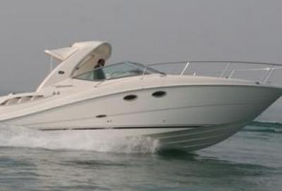 Sea Ray 250 Sport