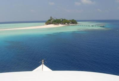 Maldive, il fiore delle Indie